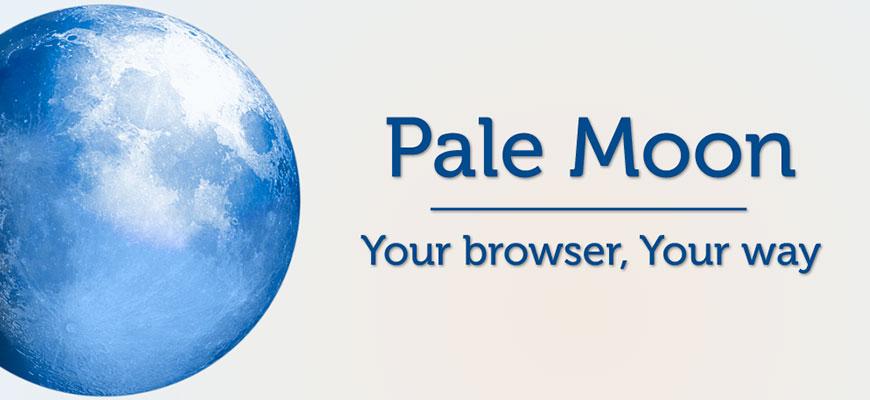 Pale Moon 28.9